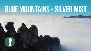 Blue Mountains, Australia, Silver Mist, 4K, Time Lapse
