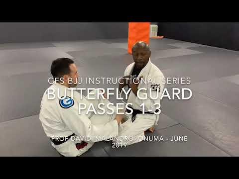Butterfly Guard Passes - CFS BJJ Instructional Series - June 2019