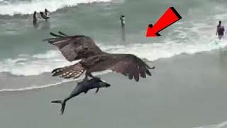 شاهد لحظة ظهور معجزة في شاطئ يتعري فيه النساء والرجال..!!!