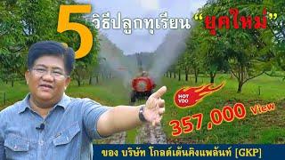 """5 วิธีปลูกทุเรียน """"ยุคใหม่"""" ของ บริษัท GKP : ต้นไม้และสวน TV"""