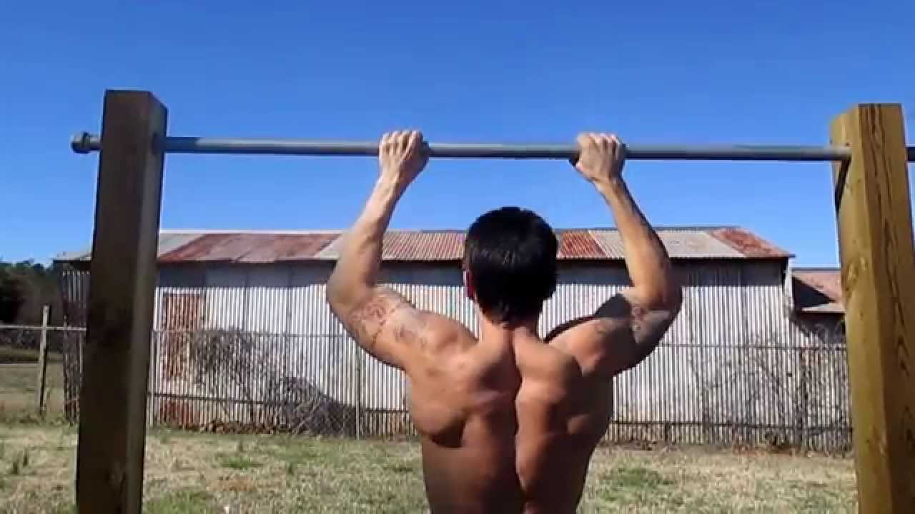 stronger wider back and definition,back workout on pull up bar