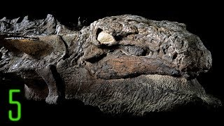 5 New Dinosaur Discoveries that Reveal What They Looked Like in Real Life