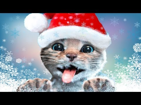 Fun Pet Care Kids Game - Little Kitten Adventures - Play Fun Xmas Costume Dress-Up Party Gameplay