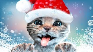 Скачать Fun Pet Care Kids Game Little Kitten Adventures Play Fun Xmas Costume Dress Up Party Gameplay