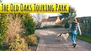 Best UK Campsite? - Old Oaks Touring Park