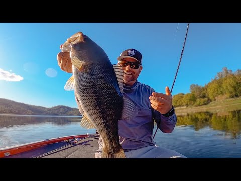 Spring Bass Fishing LIVE On Lake Berryessa! Raw Fishing Footage!
