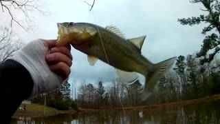 BASS FISHING ON PRIVATE POND! WILL IT PRODUCE?