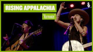 Rising Appalachia - Harmonize (Live on eTown)