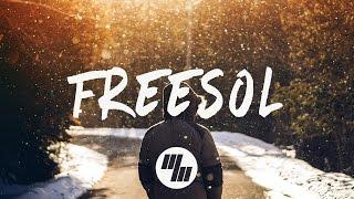 Seven lions - freesol (lyrics / lyric video) feat. skyler stonestreet
