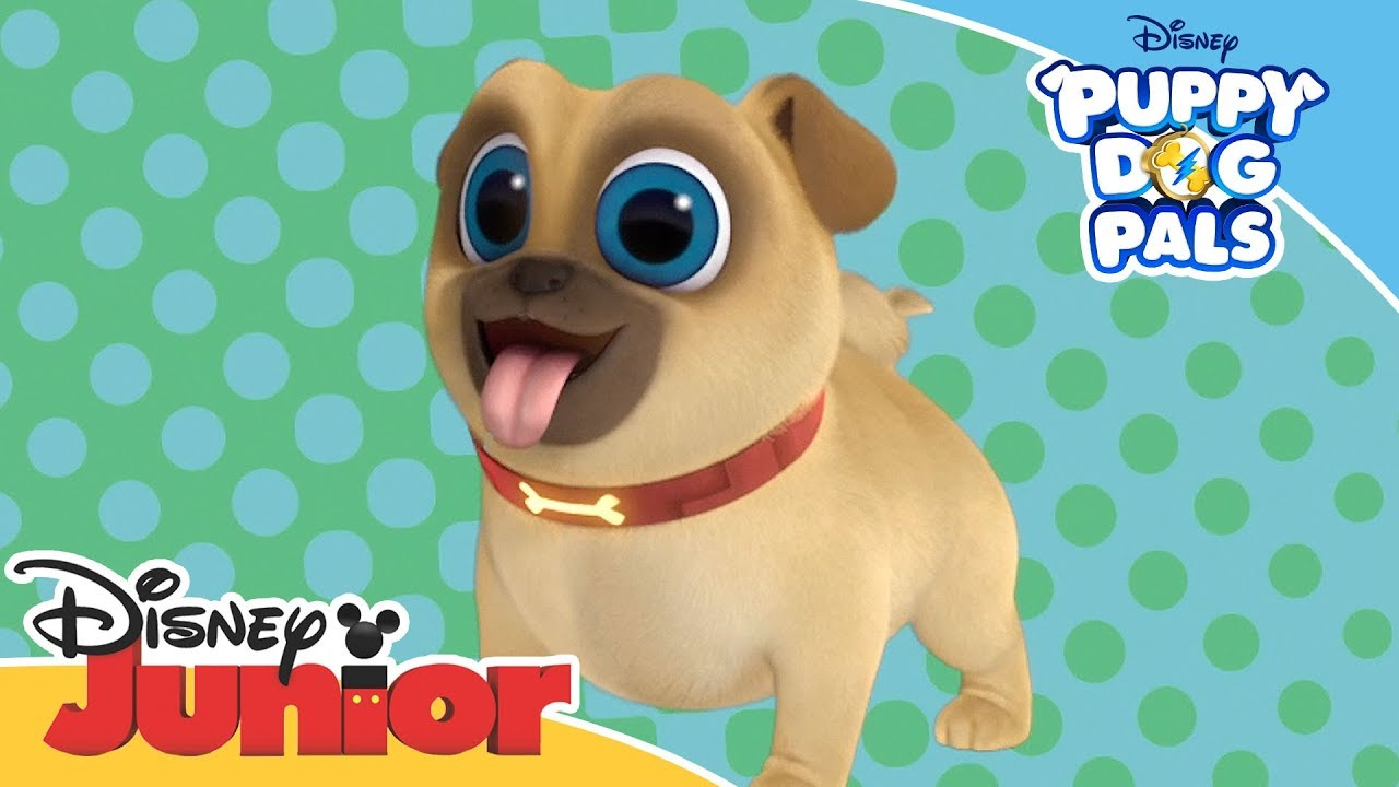 Puppy Dog Pals Introducing Rolly Official Disney Channel Africa