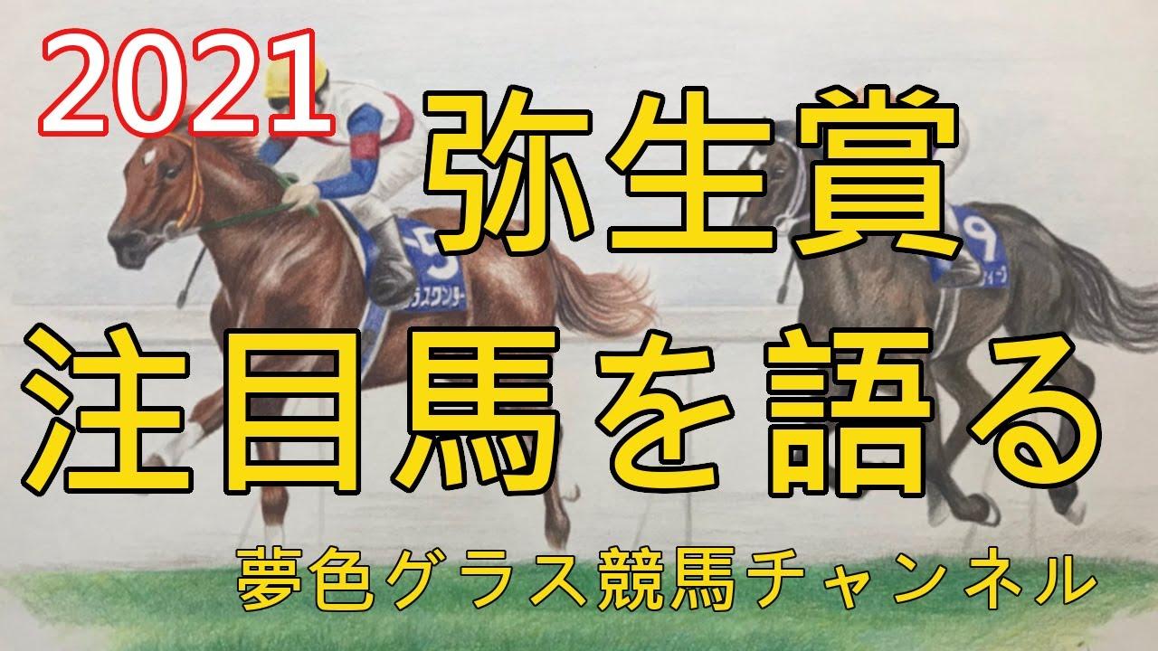 【注目馬を語る】2021弥生賞ディープインパクト記念!ダノンザキッドを負かすなら条件付きでこの馬?素質をそれほど感じる馬とは