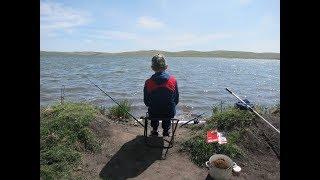 Вот это рыбалка Ловля карася в Хакасии.
