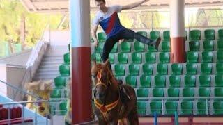 В Сочи артисты конного шоу стали натурщиками