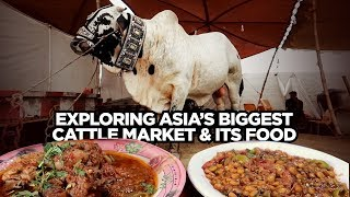 Street Food of Karachi Pakistan | Sohrab Goth Mandi | Exploring Asia's Biggest Cattle Market