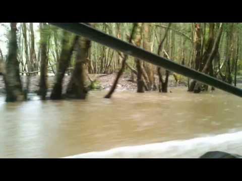 Du lịch Tràm Chim - Đồng Tháp
