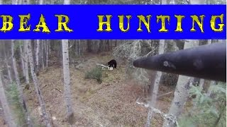 Bear hunting . охота на медведя смотреть !