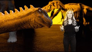 Dinosaur Farting Alert: How to feed a giant? - Earth Unplugged