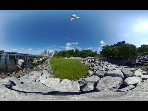 Brooklyn Bridge Park Virtual Reality (VR)