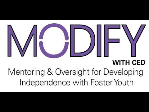 MODIFY training for professionals