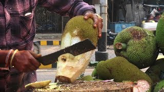 Download JACK FRUIT CUTTING SKILLS | Fruit Ninja of Raw Jack Fruit | Indian Street Food 2019 Mp3 and Videos