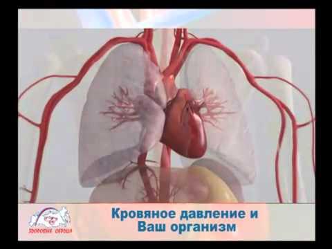 Гипертония - жизнь под давлением