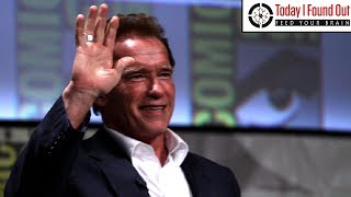 The Surprisingly Lucrative Pre-Fame Career of Arnold Schwarzenegger