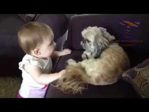Dogs Teaching Babies to Talk