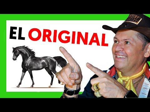 Tordillo Negro  - Tordillo Negro (Video Oficial)