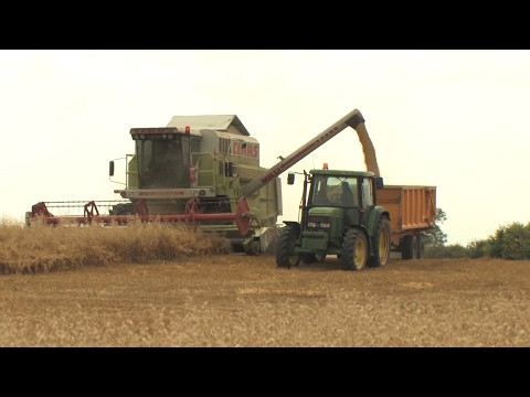 A brave new world: Norfolk's farmers discuss facing up to the challenges of Brexit Britain