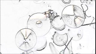 Doo Doo Doo Doo Doo (heartbreaker) Drum play along
