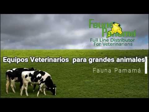 Equipos Veterinarios Para Grandes Animales