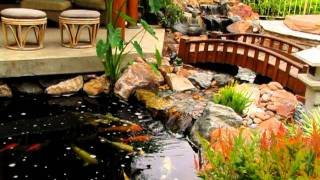 Traditional Japanese Koi Pond And Stream Landscape By San Diego Ponds