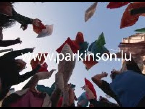 Giant Public Pillow Fight – the University of Luxembourg fights Parkinson's disease
