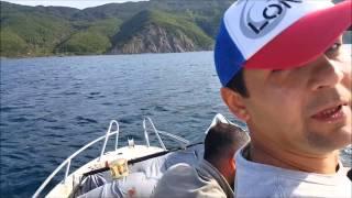 totem fishing team  orkinos avı  203 cm 128 kg