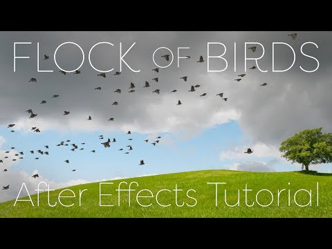 Flock of Birds - After Effects Tutorial