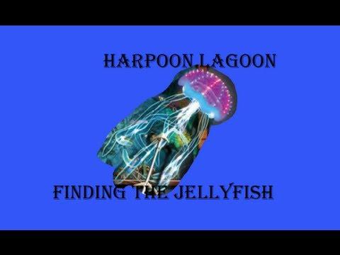 Harpoon Lagoon: Finding The Jellyfish - YouTube
