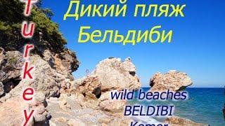 Отдых в Турции! Kemer\Beldibi\wild beach\Кемер,Бельдиби,дикий пляж. Собаки в Турции