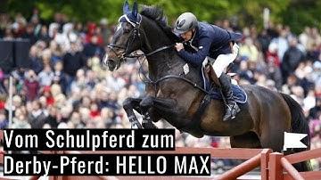 Vom Schulpferd zum Derby-Pferd 😱 | Ein ganz besonderes Pferd! | Gilbert Tillmann's Hello Max