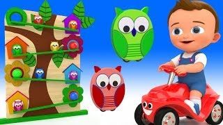Owl Toys Wooden Slider ToySet 3D - Little Baby Fun Learning Colors for Children Kids Educational