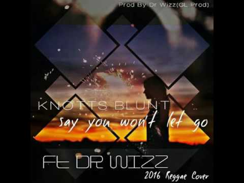 Tolenz and Ashes (Knotts Blunt) Ft Dr Wiz - Say You Won't Let Go (Reggae Cover)