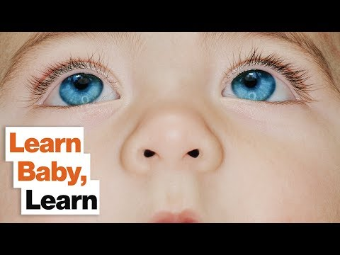 Babies Are Master Learners: How Adults Can Stimulate Their Innate Learning Skills | Janet Lansbury
