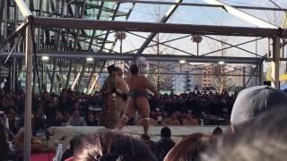 2014年3月4日(土)大阪場所PRの為に行われたイベント大相撲うめきた場...