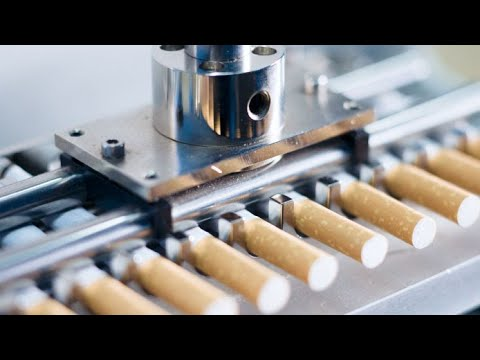 Excellent Factory Tobacco Manufacturing Process. Amazing Cigarette Production Line Modern Technology