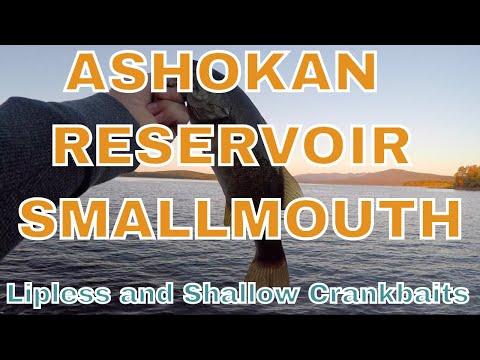 Ashokan Reservoir NY - Smallmouth On Lipless And Shallow Crankbaits