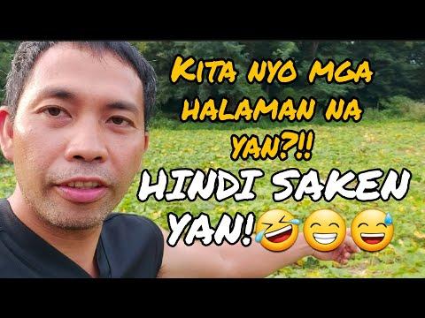 Pang Pinakbet na gulay kumpleto, parang nasa pinas lang! @Just for Fun TV