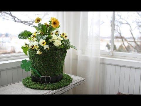 St. Patrick's Day Planting Inspiration