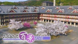 第48回「桜 (ドローン撮影)」