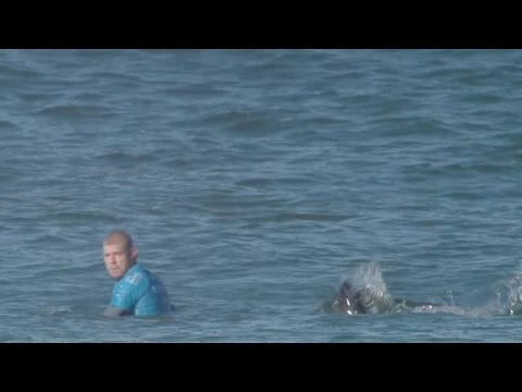 Surfer talks about how he escaped a great white shark