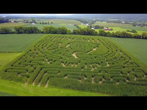 Presenting the Corn Maze 2017