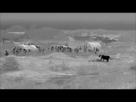 INDIA'S WANDERING LIONS ★ Documentary Tube HD